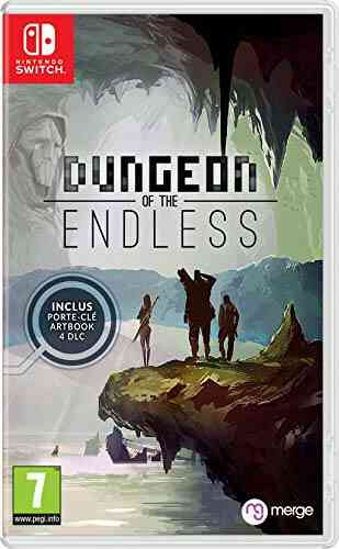 Jeux PS4 Just For Games Dungeon of the endless 1